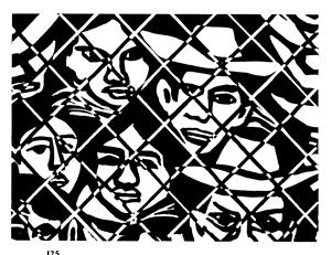 rini border fence